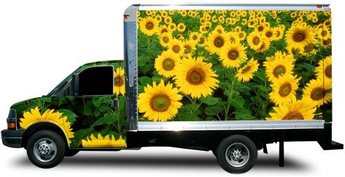 Box Truck Wrap #51633