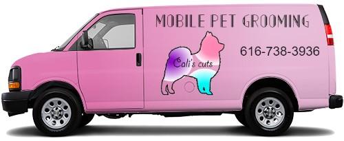 Cargo Van Wrap #51878