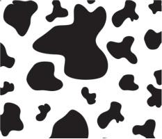 """Cow Spots Car Magnet 14""""W x 12""""H"""