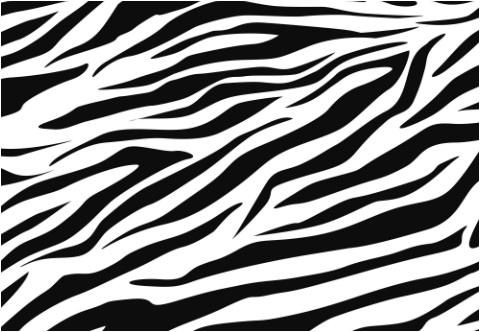 Zebra stripes car decal 26w