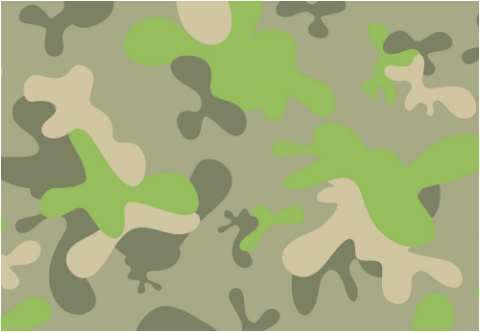 "Fun Camo Car Decal 26""W  x 18""H"