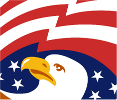 "Bald Eagle Car Magnet 14""W x 12""H"