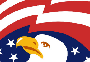 "Bald Eagle Car Decal 26""W  x 18""H"