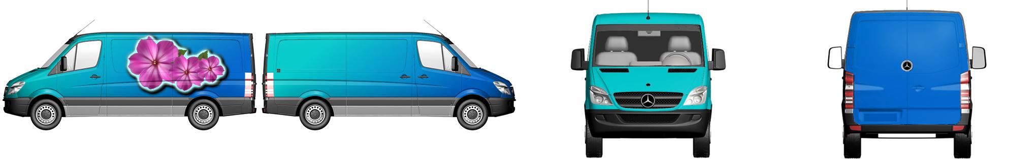 Van Wrap #52392