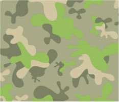 "Fun Camo Car Magnet 14""W x 12""H"