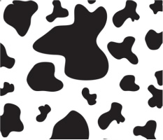 "Cow Spots Car Magnet 14""W x 12""H"
