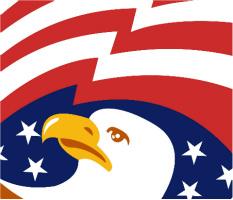 "Bald Eagle Car Magnet 14""W x 12""H"