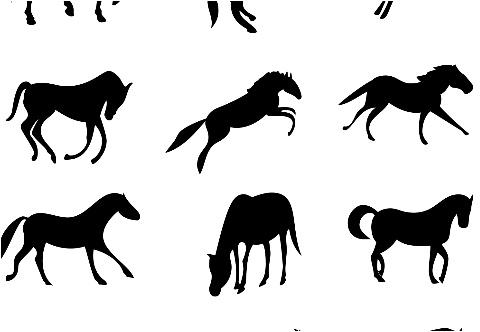 "Horses Car Decal 26""W  x 18""H"