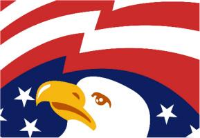 "Bald Eagle Car Decal 26""W  x 18""H"